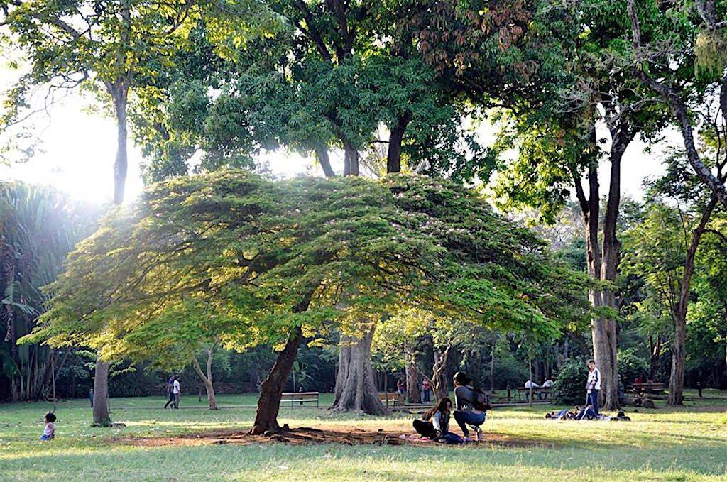 Jardín Botánico, photo courtesy of Jardín Botánico