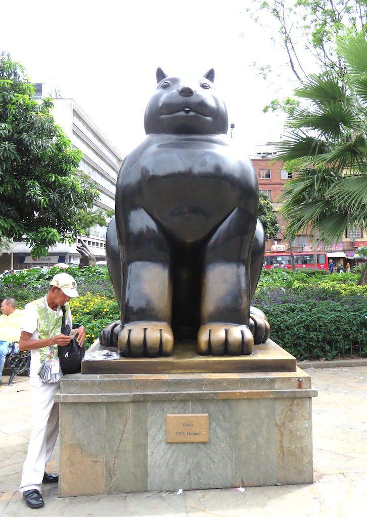 7. Gato (Cat), 1993