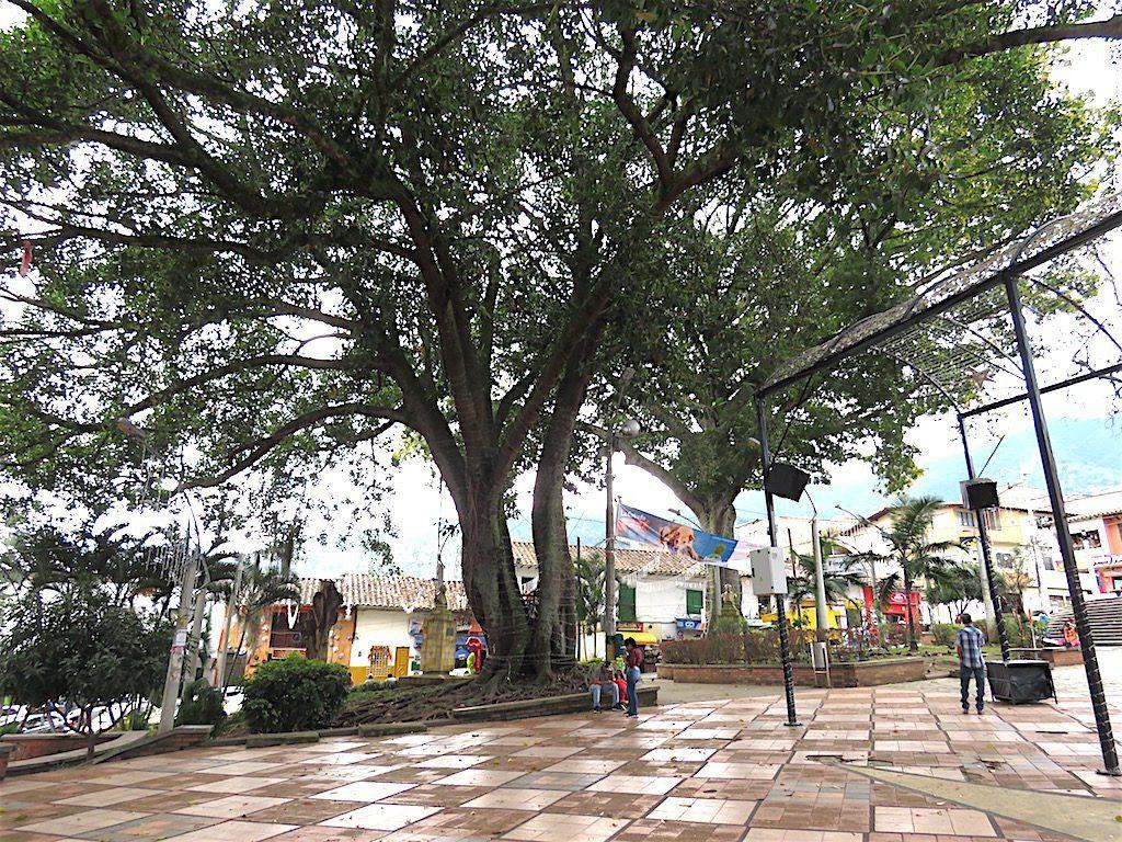 Parque La Estrella