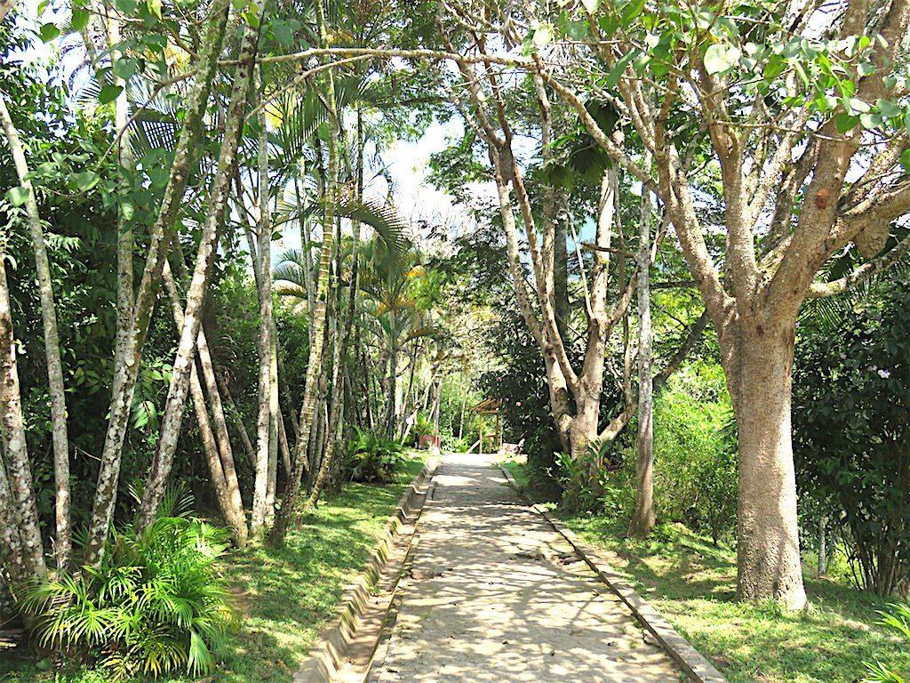 La Viejita– A Nature Trail