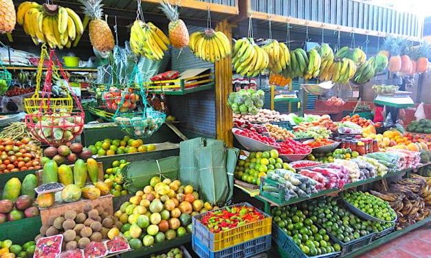 Plaza Minorista: A Guide to Medellín's Farmers Market