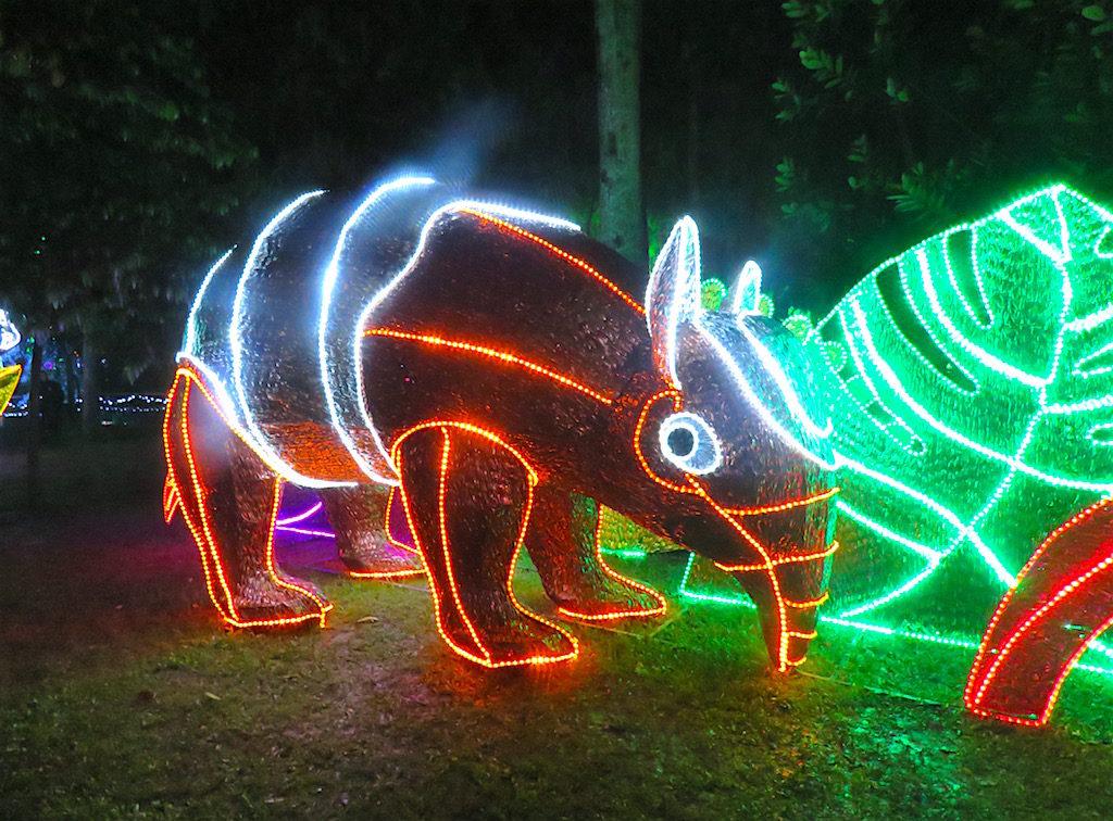 An anteater Christmas lights display