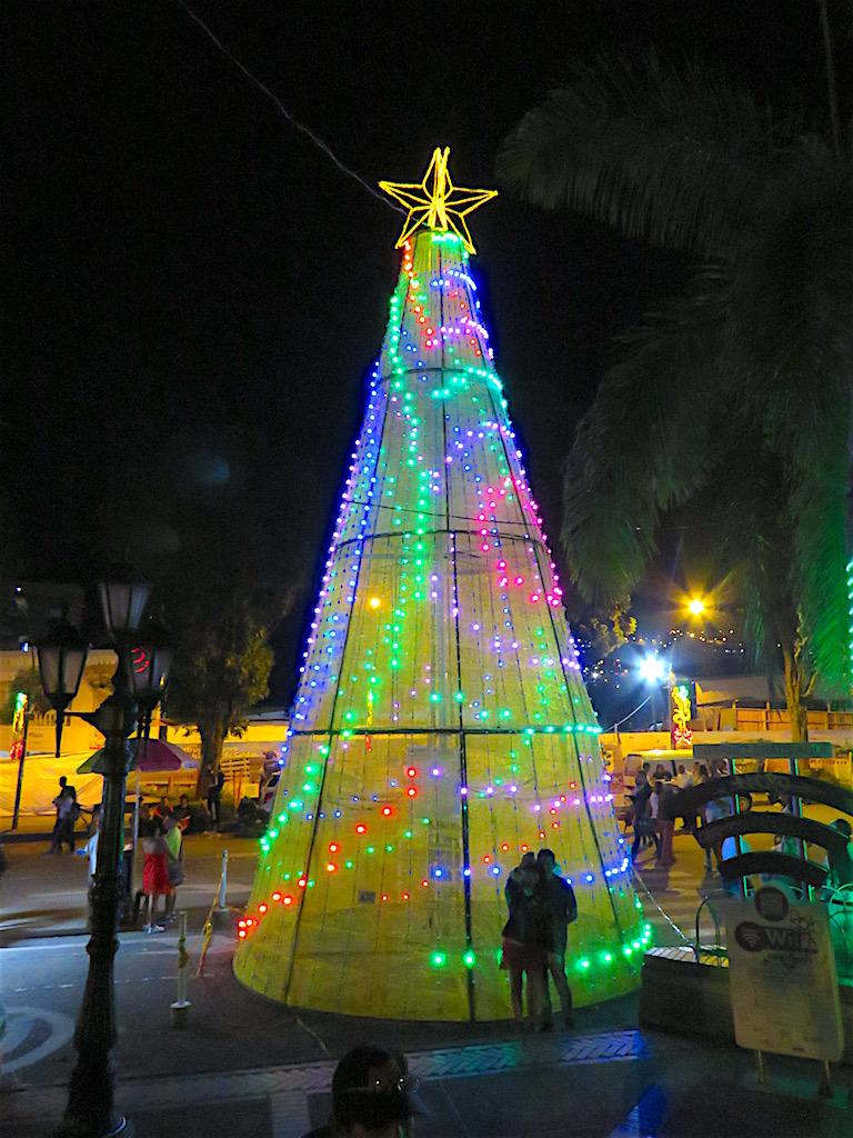 Christmas tree at Parque Caldas